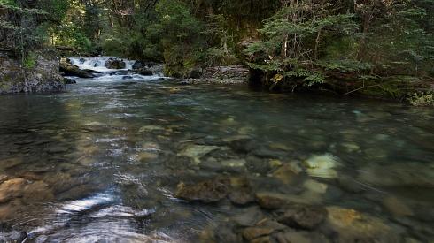 Río cordillerano