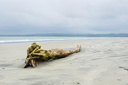Playa de Mompiche, Ecuador.