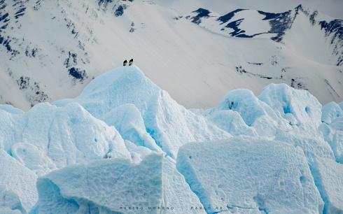 centinelas del glaciar