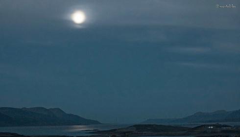 Luna y Niebla