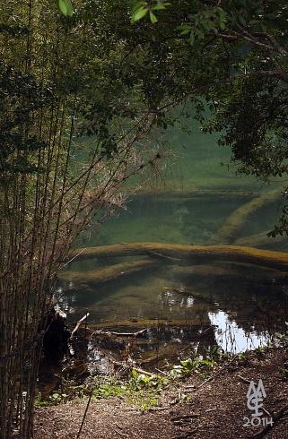 Espiando el Rio Frias