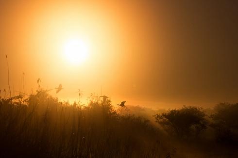 Otro amanecer en Iberá
