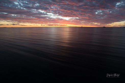 Laguna Paraná - Isla San Alonso