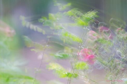 El perfume de las flores